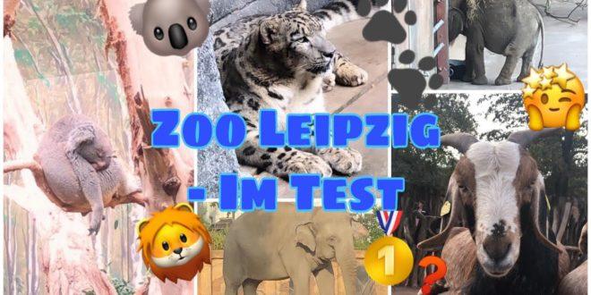 Leipziger Zoo |  Wir testen einen Zoo