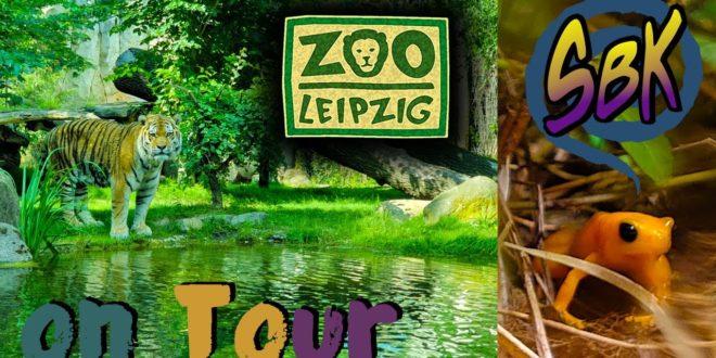Leipziger Zoo zur Koronavirus-Krise
