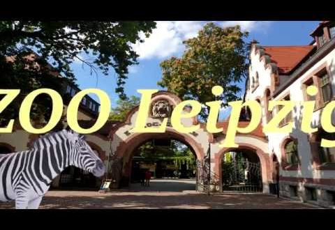 Willkommen im Leipziger Zoo - Zoo Tour 2019