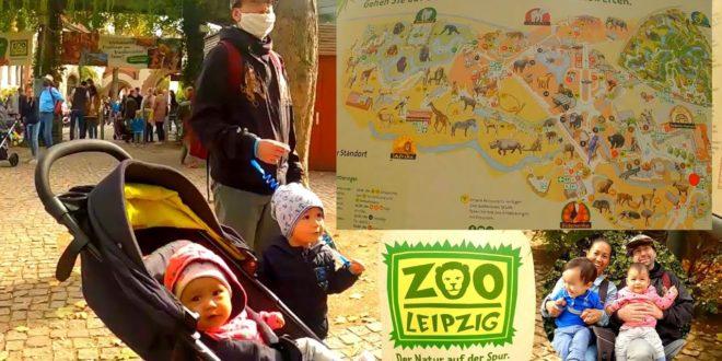 ZOO, LEIPZIG (Zoo in Leipzig, Sachsen) |  LEIPZIG ZOOLOGISCHER GARTEN