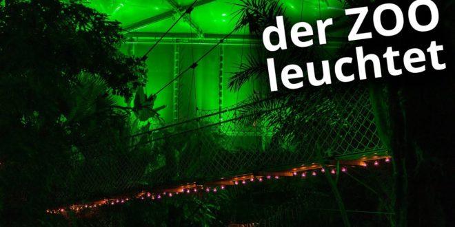 Leipziger Zoo - Tropische Lichter 2019