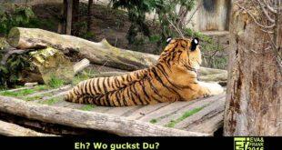 Ostern 2016 - Grüße aus dem Leipziger Zoo - Eva und Frank unterwegs