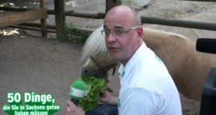 RADIO PSR - 50 Dinge - Tag 1 - Zoo der Minis in Aue