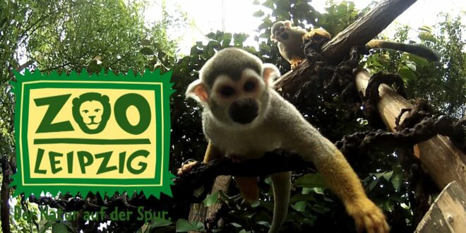Zoo Leipzig # Actioncam Special