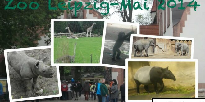 Leipziger Zoo 🦁 |  Mai 2014 |  Zoo Flashback # 1