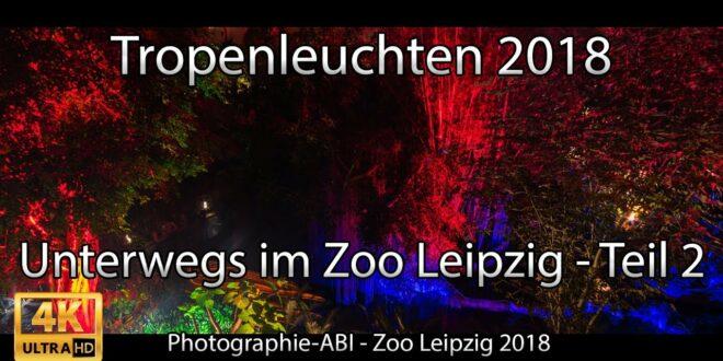 Tropische Lichter in Gondwanaland - Leipziger Zoo - Sony Alpha 6000/6300/6500 Walimex / Samyang 12 mm