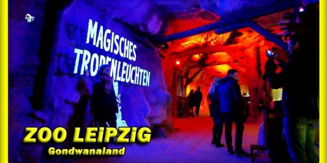 🔴 ZOO LEiPZiG - MAGISCHE TROPISCHE BELEUCHTUNG • GONDWANALAND • REISE