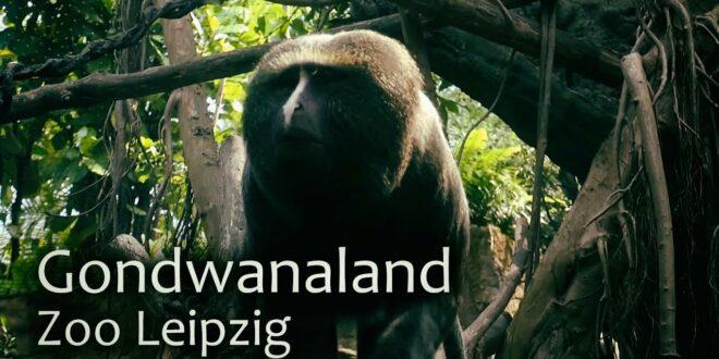 Gondwanaland Zoo Leipzig / Deutschland / HD 60p