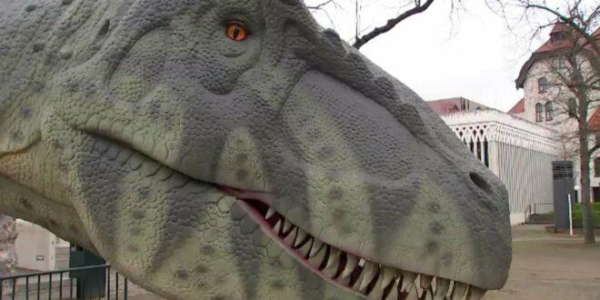 Zoorassic Park - Dinos in Leipzig (Folge 924) |  Elefant, Tiger & Co. |  MDR