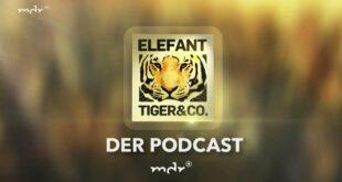 ETC der Podcast - Folge 14: Bettina Hurgitsch - Lehrerin an einer Seehundschule