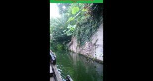Unsere Reise auf dem Gamanil-Dschungelfluss im Gondwanaland im LEIPZIG ZOO!  LUK XY