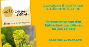 Impressionen aus den Entdeckungstagen der Bienen im Zoo Leipzig am 24.07.2021 und 25.07.2021